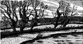 wood-engraving print: Five Trees